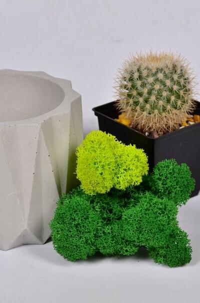 Бетонні вазони ручної роботи для рослин