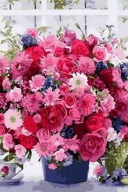 Рожеві хризантеми