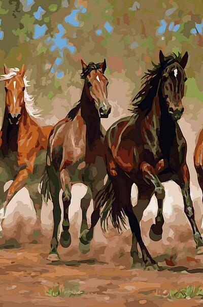 Коні в каньйоні худ. Каммінгс Кріс  (арт. VP469)