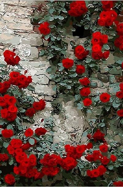 Витка троянда  (арт. MR-Q108)