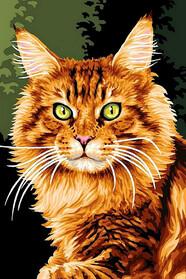 Норвезька кішка