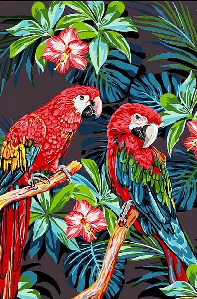 Красочные попугаи  (арт. VK186)