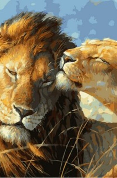Влюбленные львы  (арт. VP991)