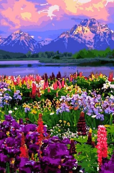 VPS1253 Картина за номерами Польові квіти